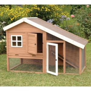 plans for a chicken coop cheap